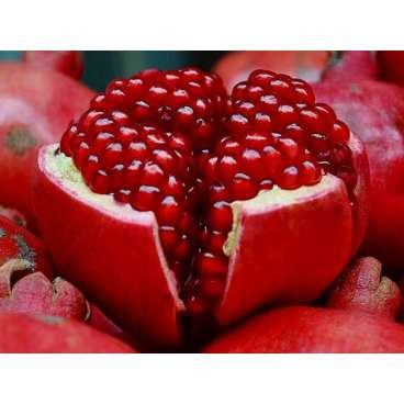 Pomegranate Flavor - Premium E-Liquid